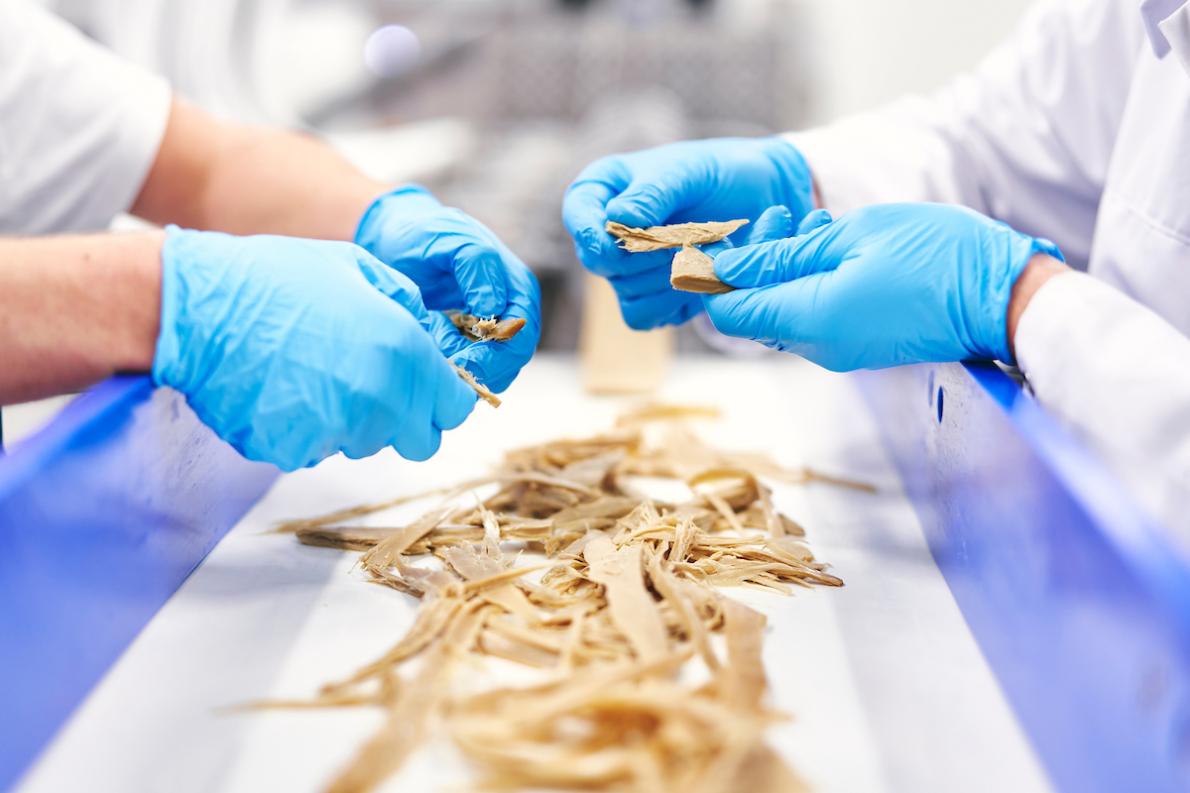 Ingrediëntenproducent Solina werkt aan eiwittransitie